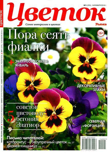 Журналы color скачать